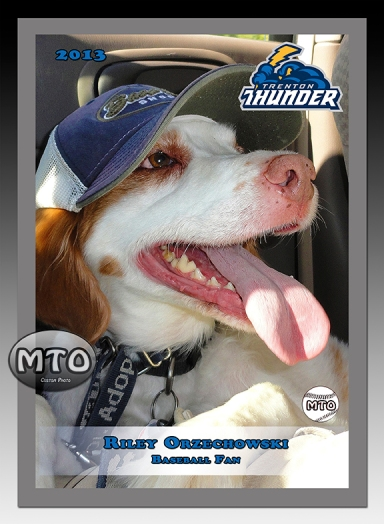 Custom Baseball Card