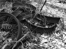 Abandoned Wagon Wheels