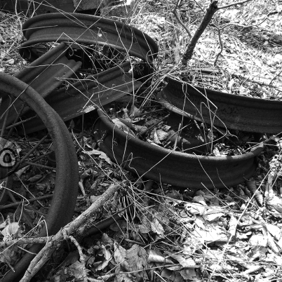 Abandoned Wagon Wheels